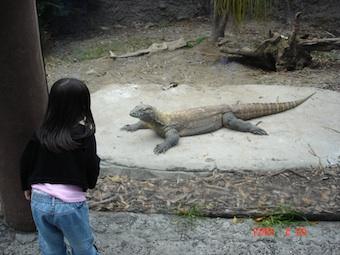 Abundon zoo